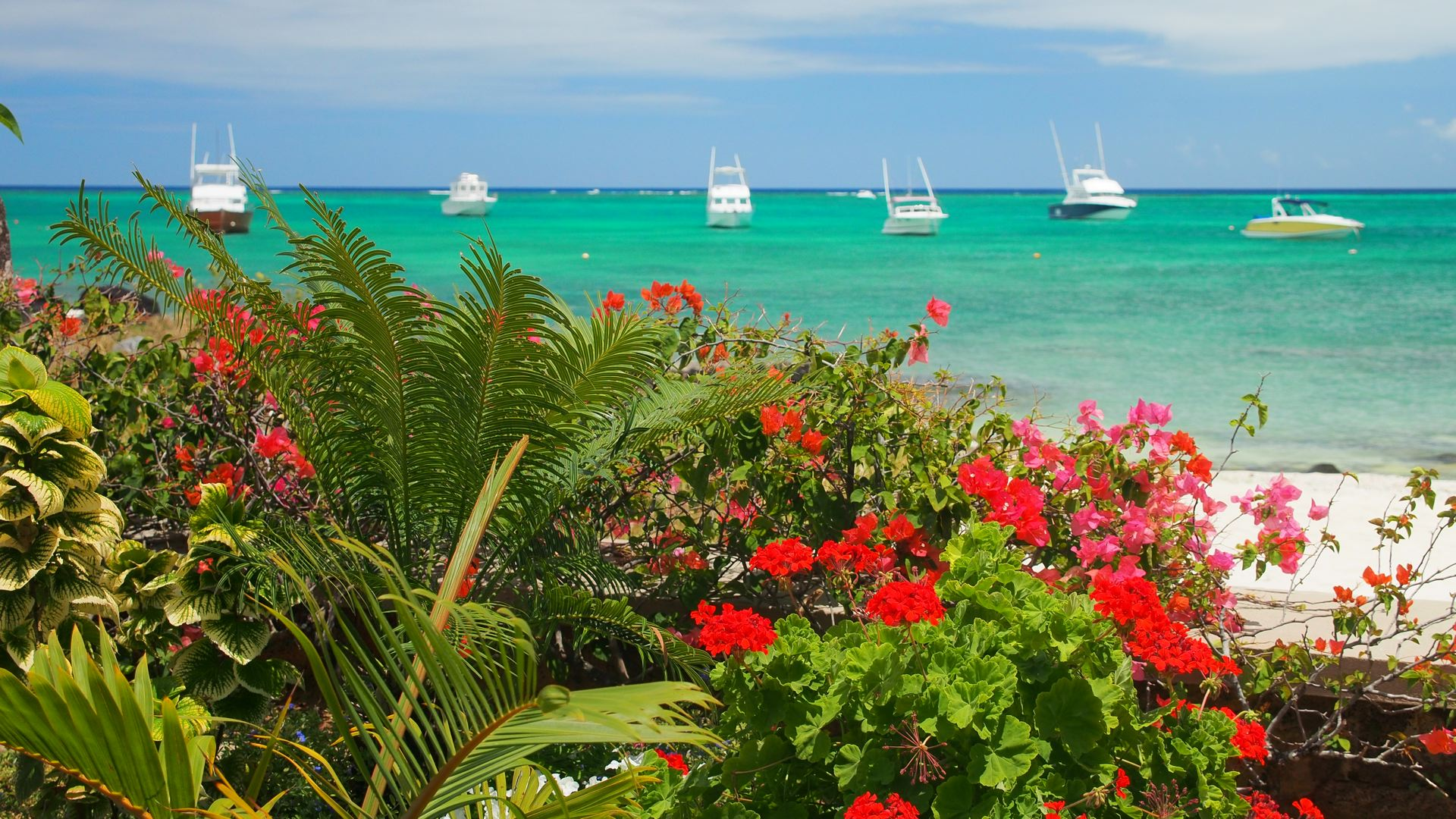 View from Lov. Le Cericier beach apartment .jpg