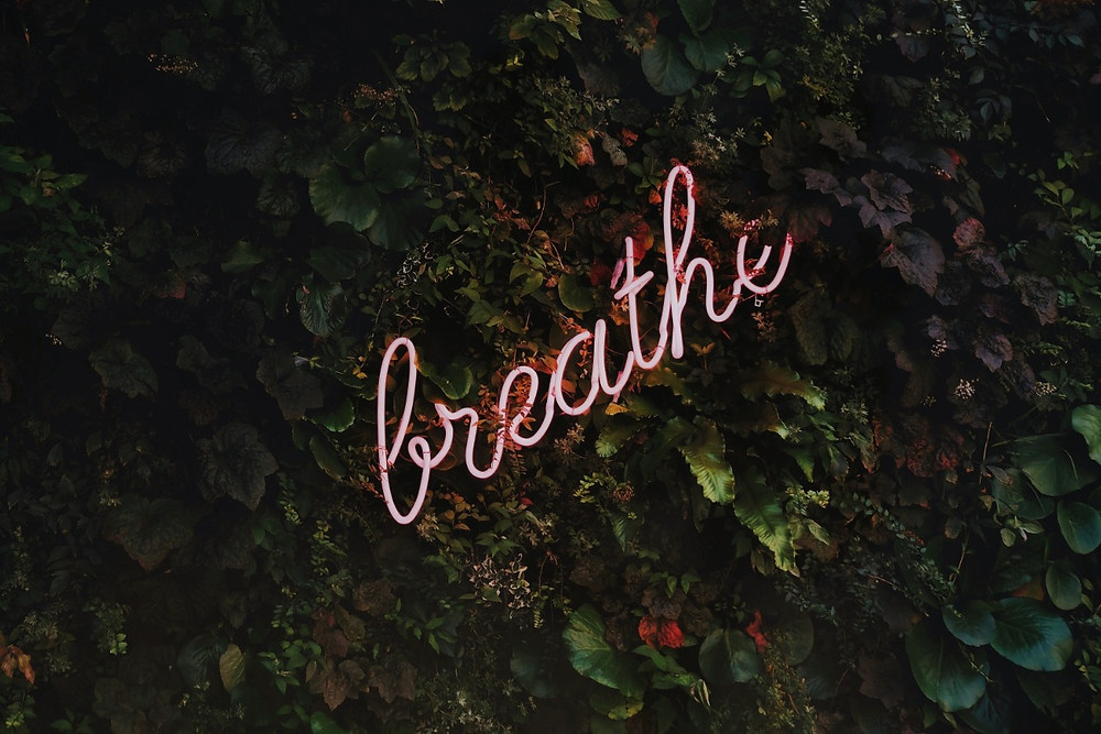 """Neon pink sign that says """"breathe"""""""