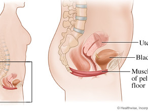 Pelvic Floor...what the heck is it?