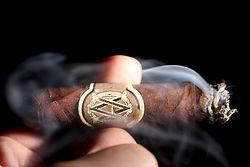 avo cigar torpedo.jpg