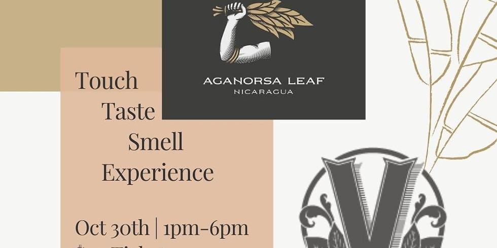 Aganorsa Cigar Touch, Taste, Smell