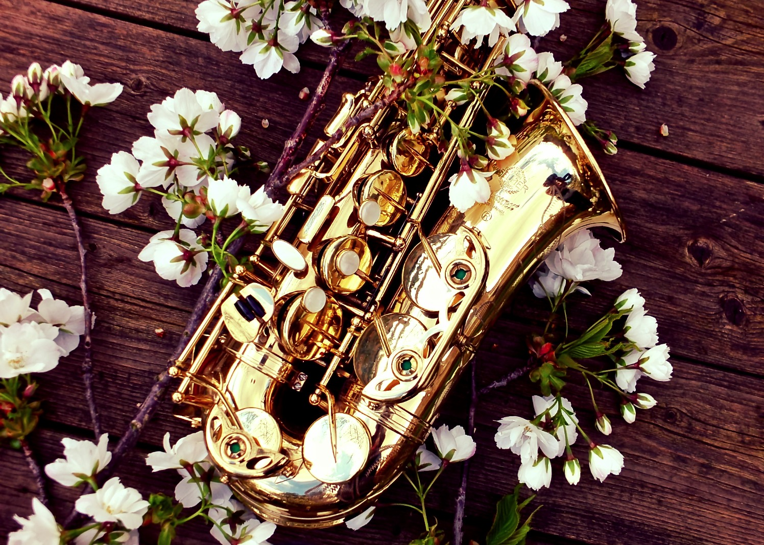 Wedding saxophone