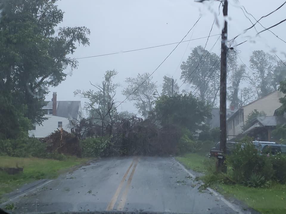 Ridge Rd. - tree down blocking the road