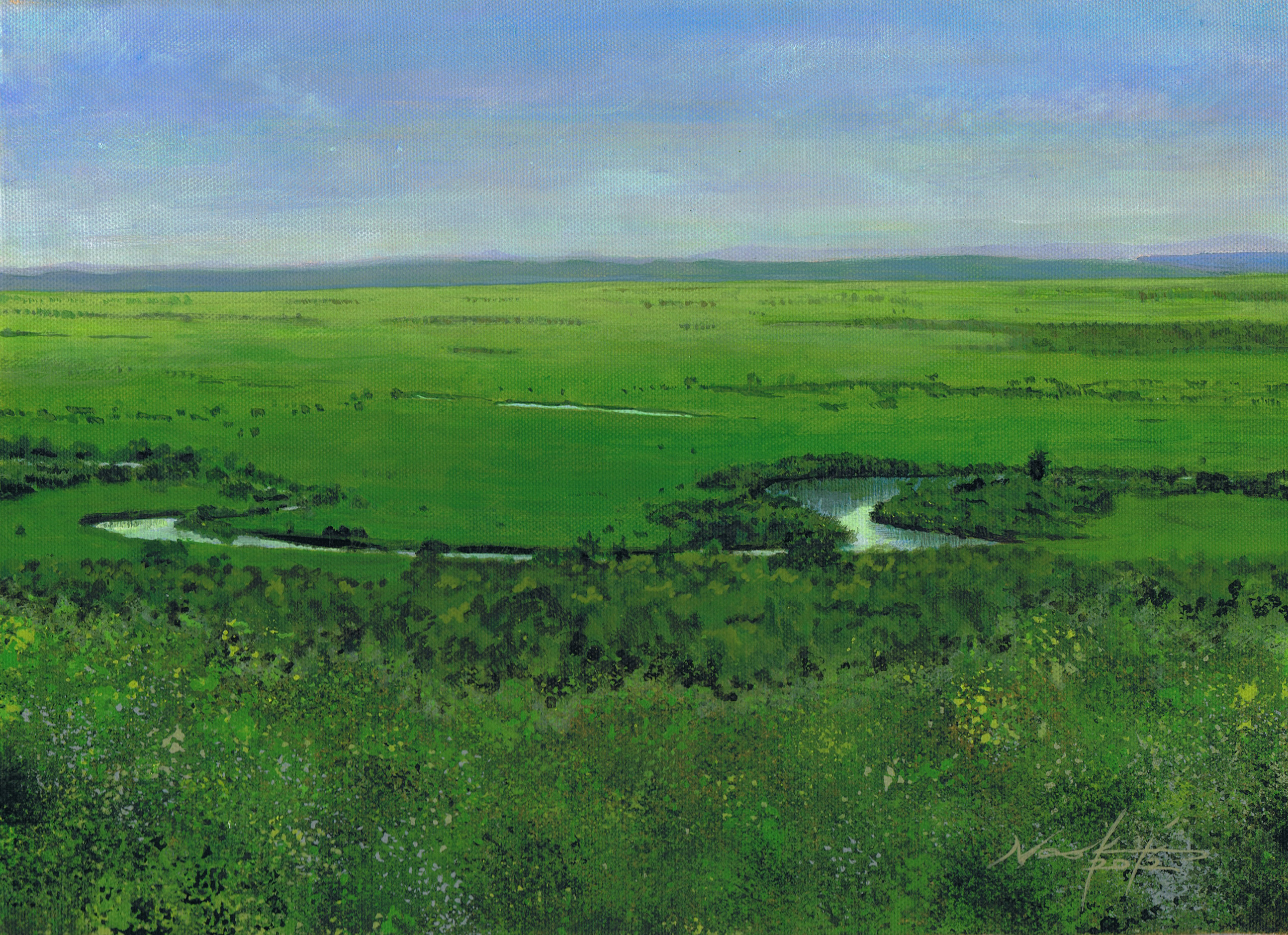 釧路湿原2012 松本直樹