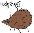 hedgehogs icon.jpg