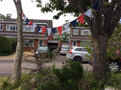 Holly's Bunting