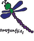 dragonfly class.jpg