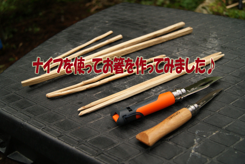 扉 DSC05636.JPG