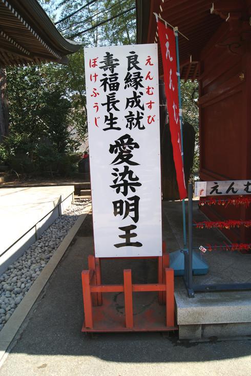 ミリ足り登山2−14.JPG