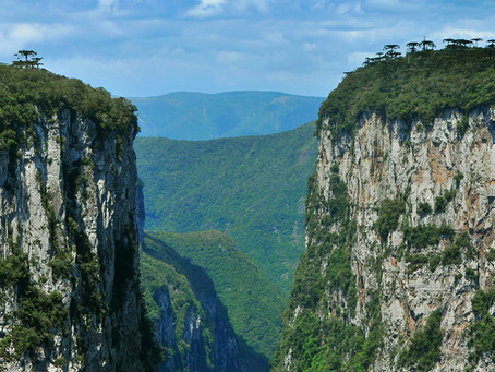 Curiosidades sobre Cambará do Sul
