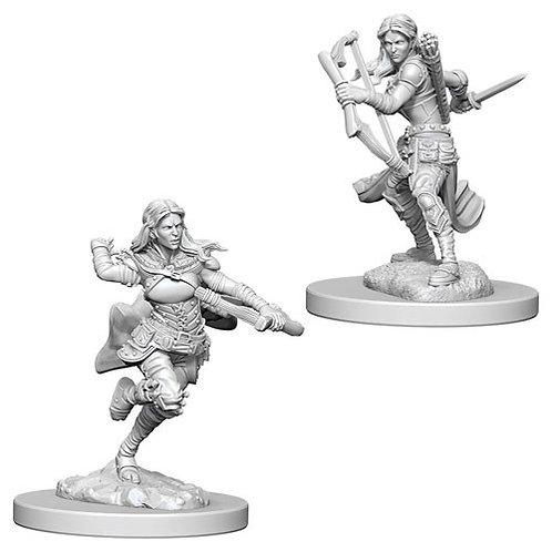D&D Figurines AIR GENASI ROGUE