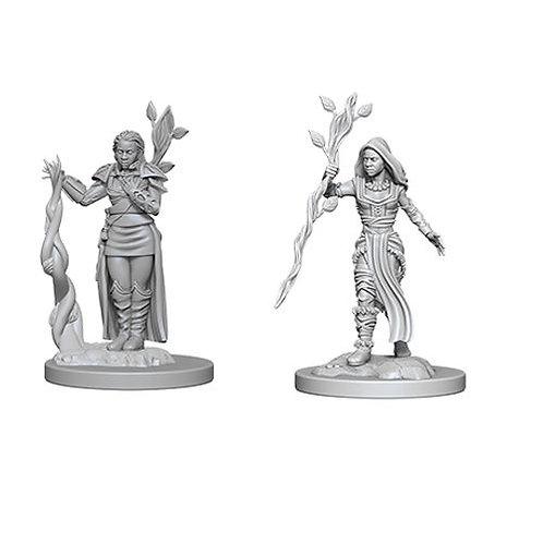 D&D Figurines HUMAN DRUID