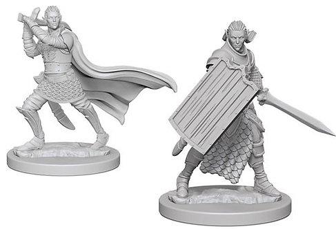 D&D Figurines ELF MALE PALADIN
