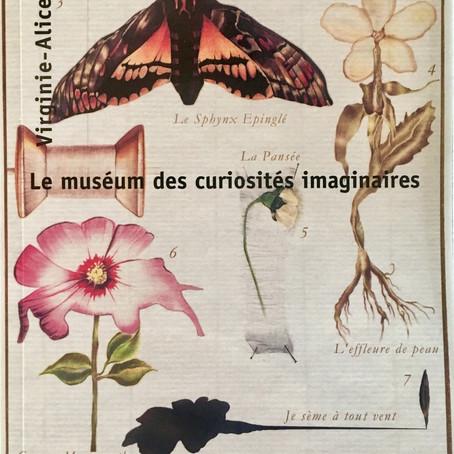 """Discover my book """"le Museum des Curiosités Imaginaires"""" Editions L'Harmattan."""