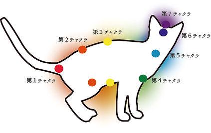レイキヒーリング/猫のチャクラ
