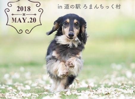 nuku-nuku-kurasu出店のお知らせ