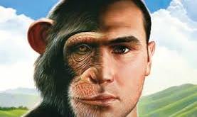 인간과 침팬지를 갈라놓은 유전자, CMAH
