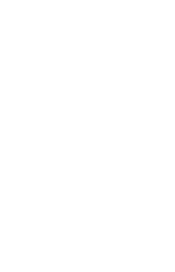 Woman 2 (Transparent White).png