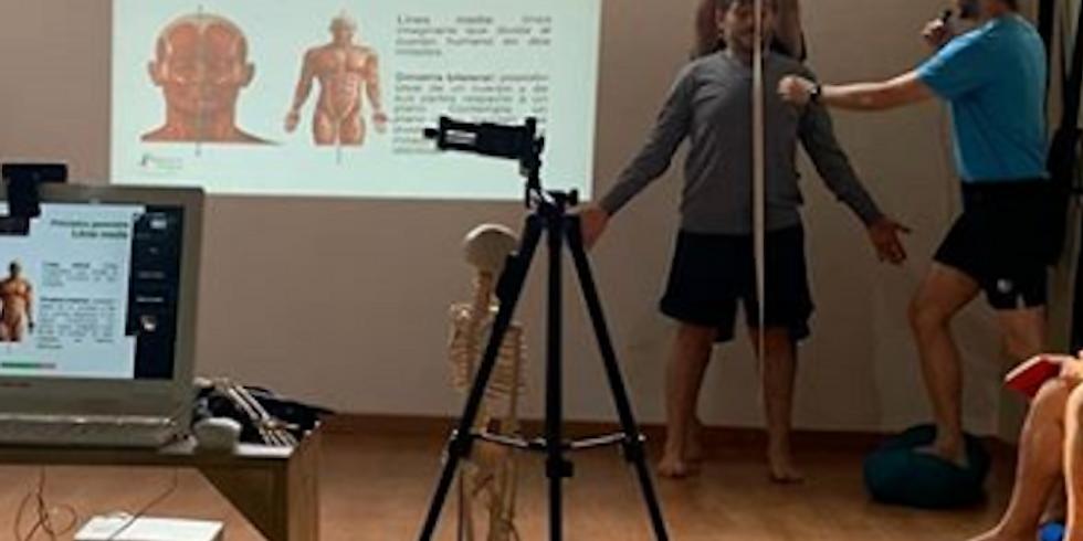Comprensión de los movimientos articulares en Asana