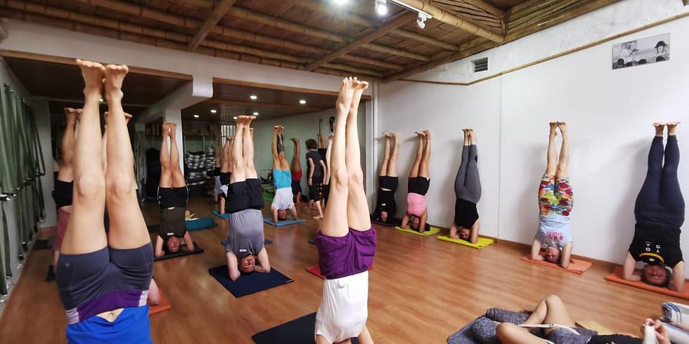 Módulo de Formación Yoga Iyengar: Modificaciones de Asanas para Personas con Problemas.