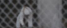 Screen Shot 2020-01-03 at 7.53.04 PM.png