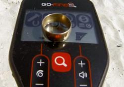 Minelab Gofind20