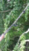 hauban dynamique 8 tonnes gefa tree save