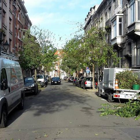 élagage d'arbres d'alignement à  Saint-Gilles