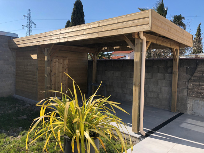 Carport en abris de terrasse avec cabanon intégré