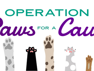 Fur the love of cats & dogs!