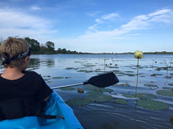 Kayak Rentals Lake Erie