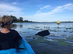 Kayak Rentals Lake Erie