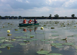 Canoe Rentals Lake Erie