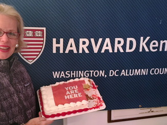 Next Generation of HKS DC Alumni Councilors Elected, Take Office