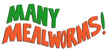 MMW Florida Logo2.PNG