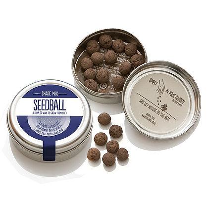 Seedball Tin - Shade Mix