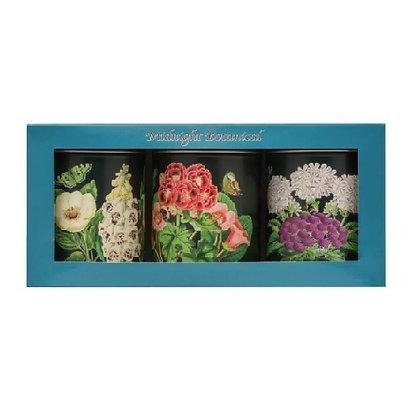 Elite Tins Midnight Botanical Three Storage Caddies