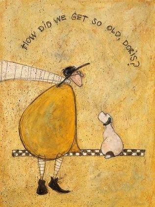 Canvas Art - Sam Toft 'How Did We Get So Old Doris'