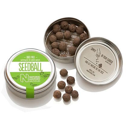 Seedball Tin - Bird Mix