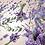 Thumbnail: Maison Berger Lavender Fields Fragrance Lamp Refill 1 Litre