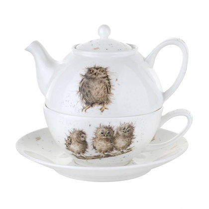 Royal Worcester Wrendale Owl Tea for One with Saucer