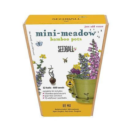 Seedball Mini-Meadow Bamboo Pots - Bee Mix