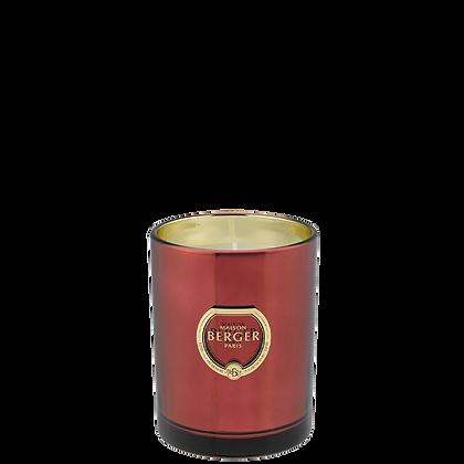 Maison Berger Candle - Exquisite Sparkle