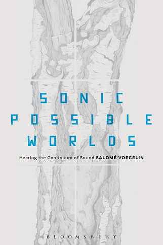 Salome Voegelin - Sonic Possible Worlds.