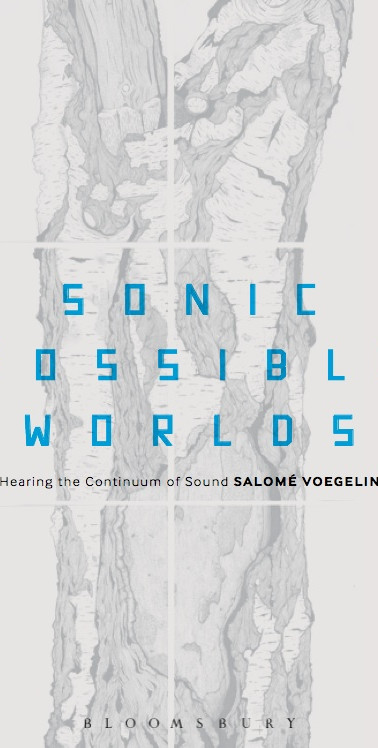 Sonic Possible Worlds