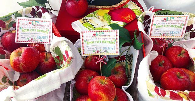 🍎 Basket of Apples