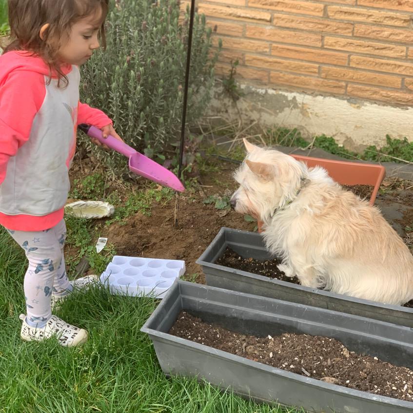 Kiddos gardening