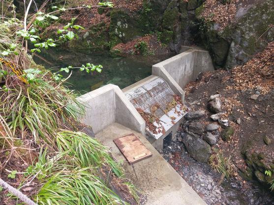 Water Intake Tokyo