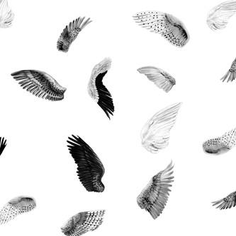 ©minnihavas-wings