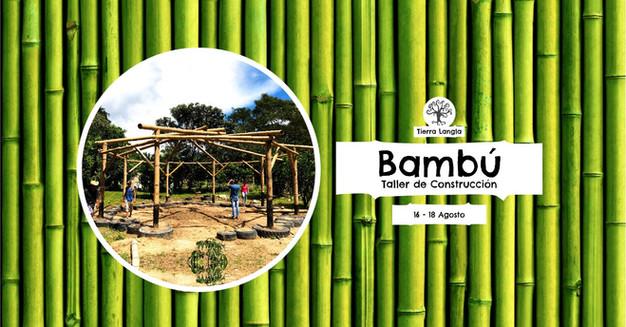 Taller De Construcción Natural Con Bambú